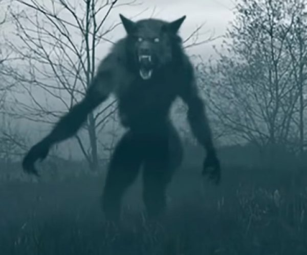 Werewolf Spell Works / Werewolf Spell Without Full Moon
